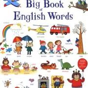 Big Book of English Words 英文單字大書(厚頁書)